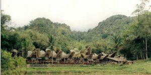 habitations au bord de la forêt en Indonésie - Sulawesi