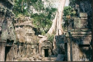 Vestiges cité Angkor